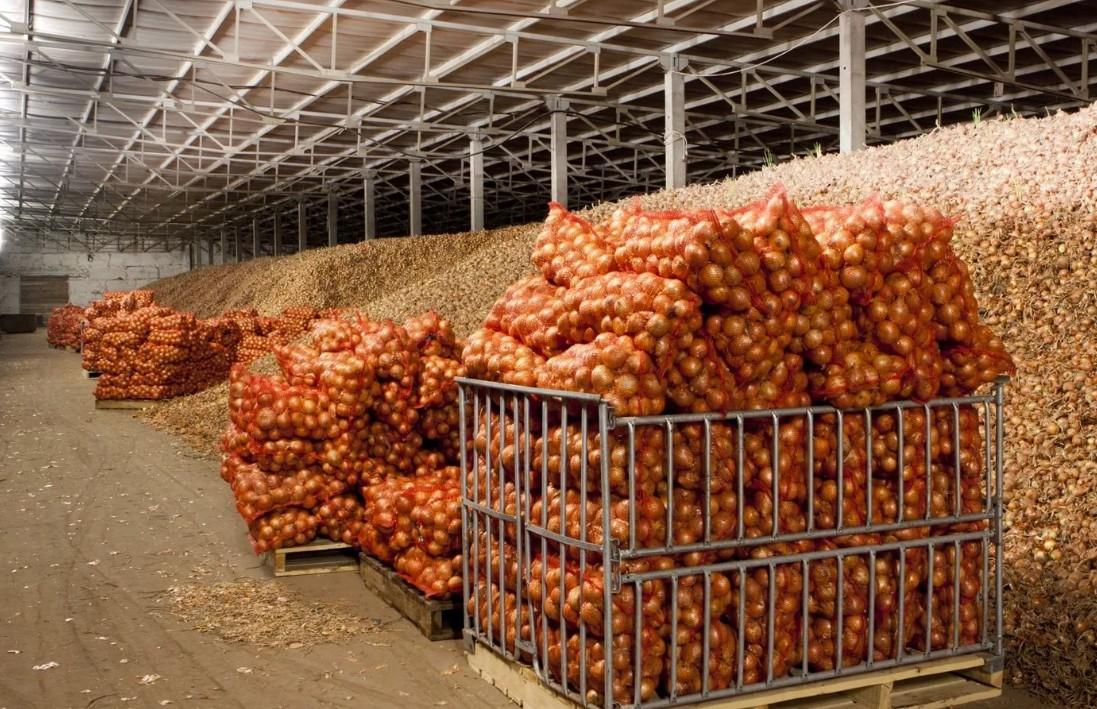 бизнес-идея строительства овощехранилища