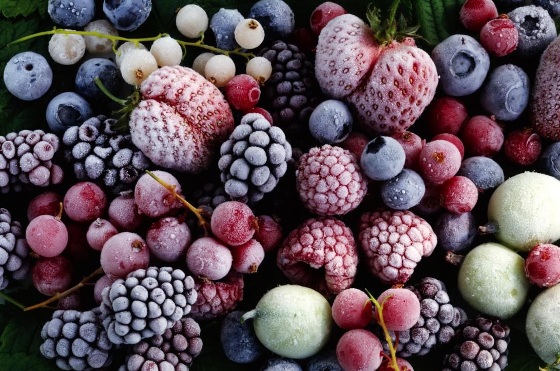 бизнес на заморозке овощей и фруктов