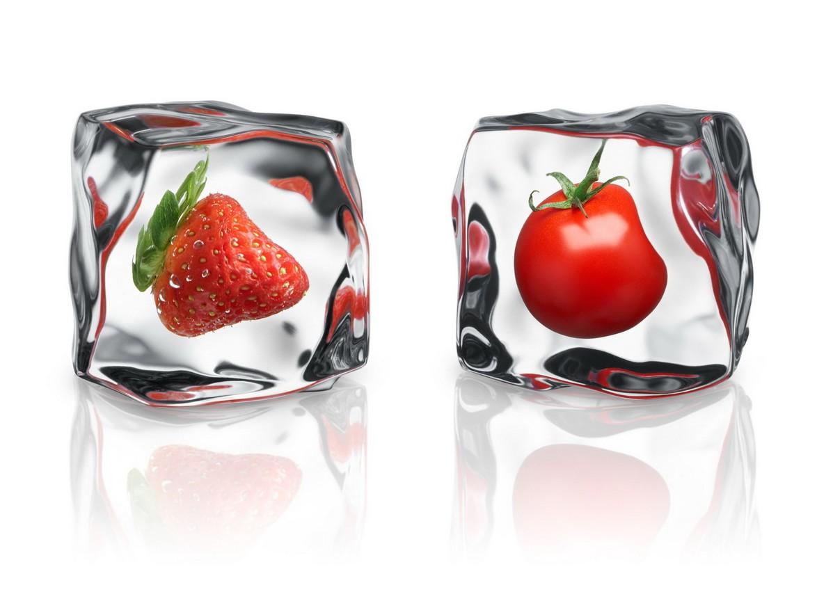 как организовать бизнес на заморозке овощей и фруктов