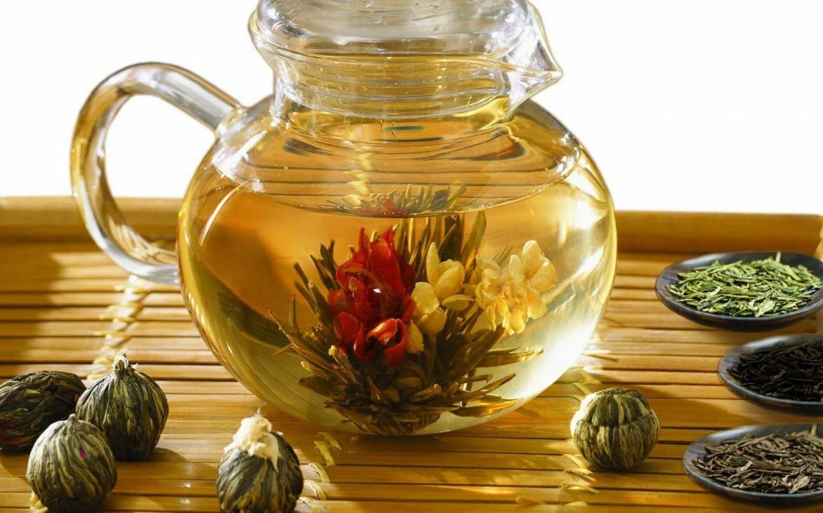 как организовать бизнес на продаже цветущего чая